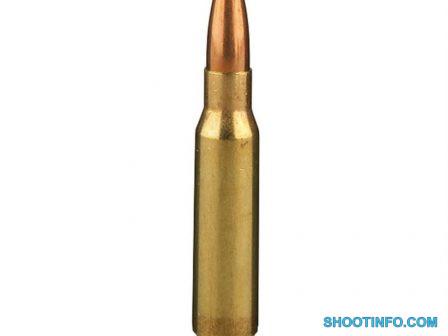 308_ammo
