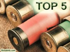 TOP 5 hunting cartridges 12 caliber
